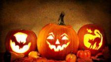 halloween in brisbane